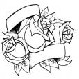 20130713_roses_scroll