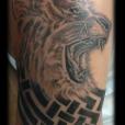 20100529_lion