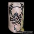 Scorpio tribal