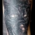 20200311_wolf