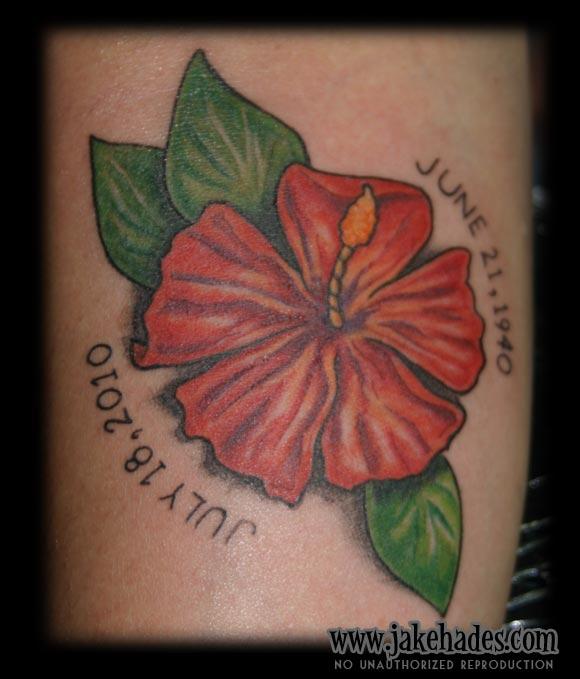 20100825_hibiscus1