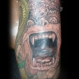 Monkey idol over elbow