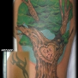 20110714_tribal_coverup